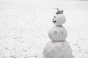 The Story of the Snowman